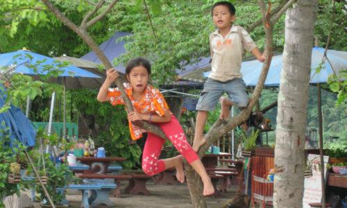 Thaïlande : Chiang Mai