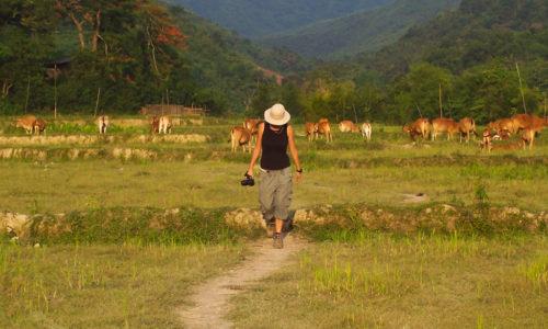 Laos : Muang Ngoi, village laotien